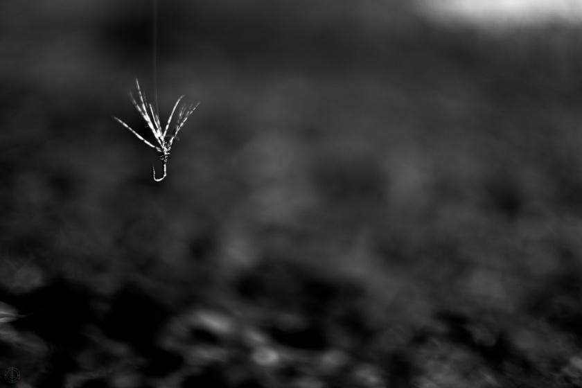 Tenkara Fly Simplicity